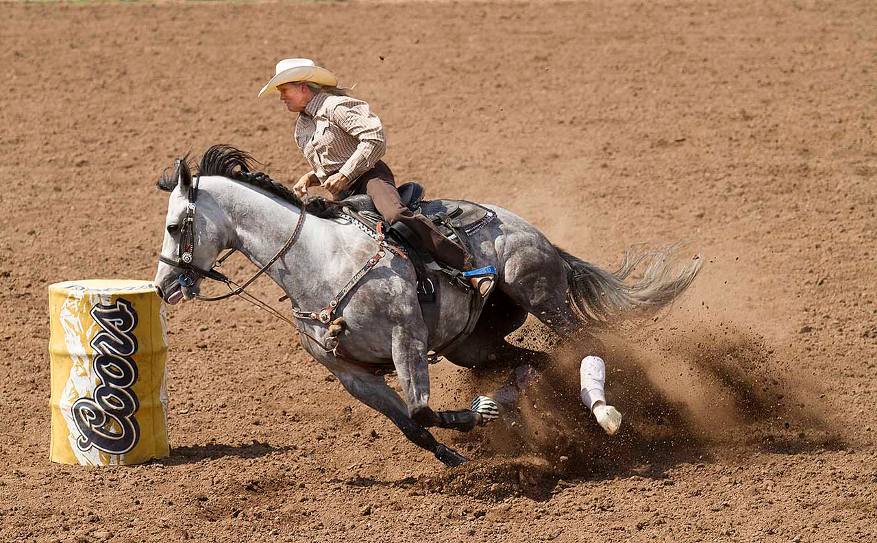 IMAGE: http://icassell.smugmug.com/Other/Payson-Rodeo-2012/i-fkZc4dz/0/X2/IMG2657-X2.jpg